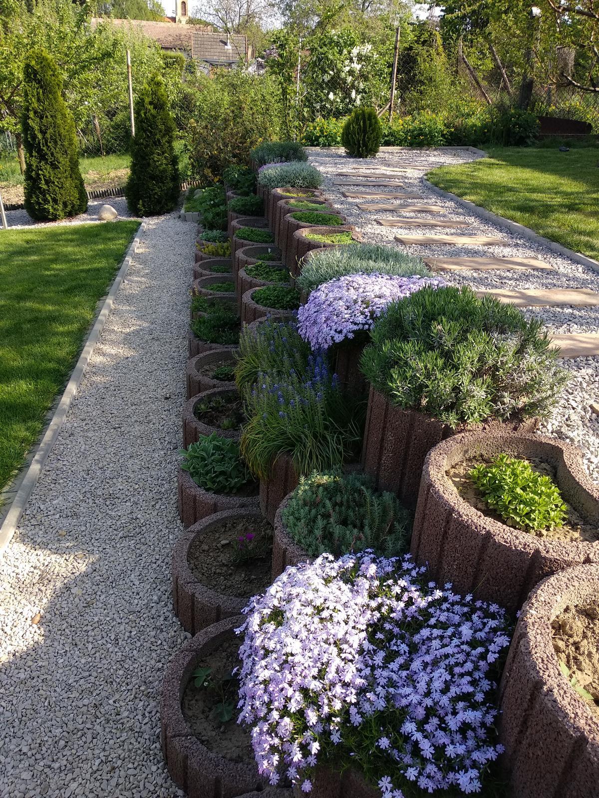 Naša záhrada - Obrázok č. 24