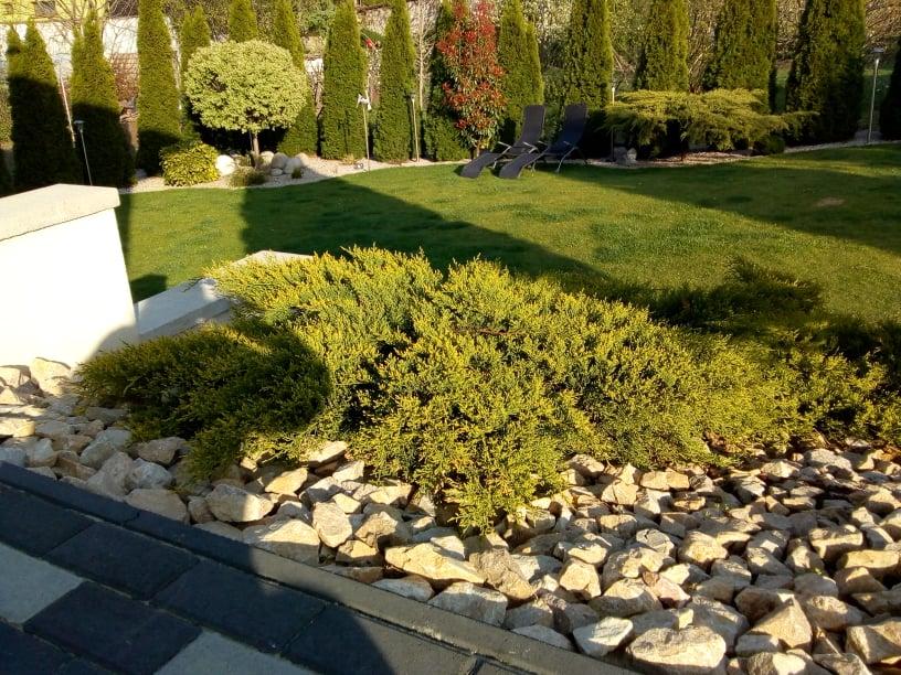 Naša záhrada - Obrázok č. 34