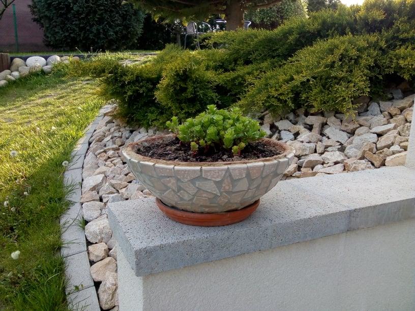 Naša záhrada - Obrázok č. 39