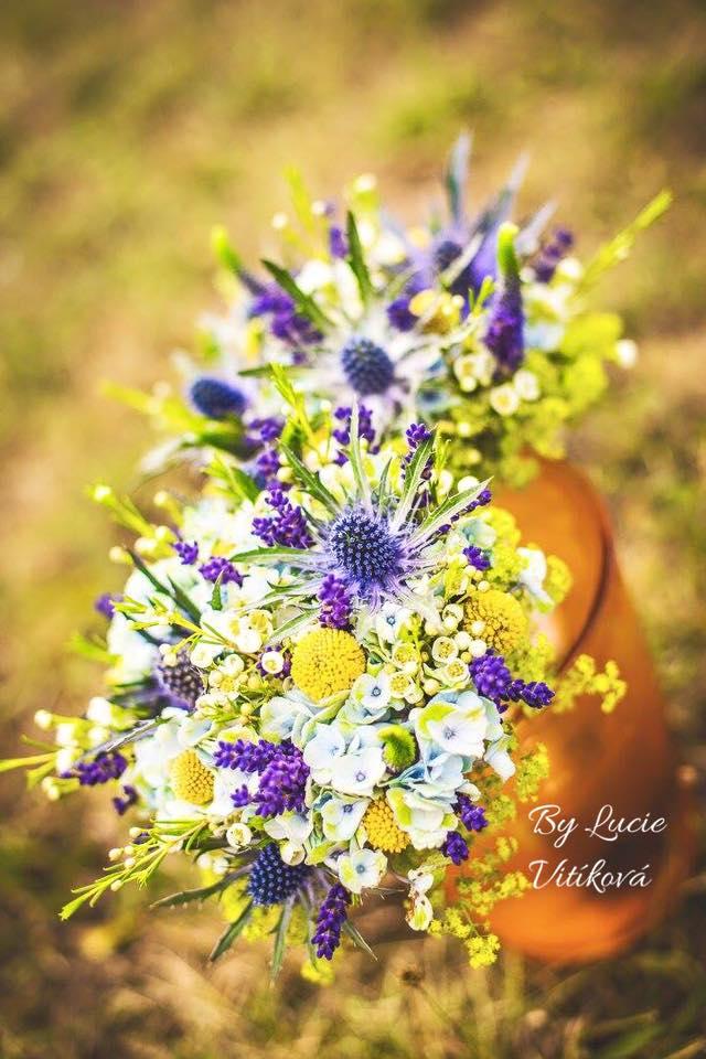 kvetinyvital - Obrázek č. 37