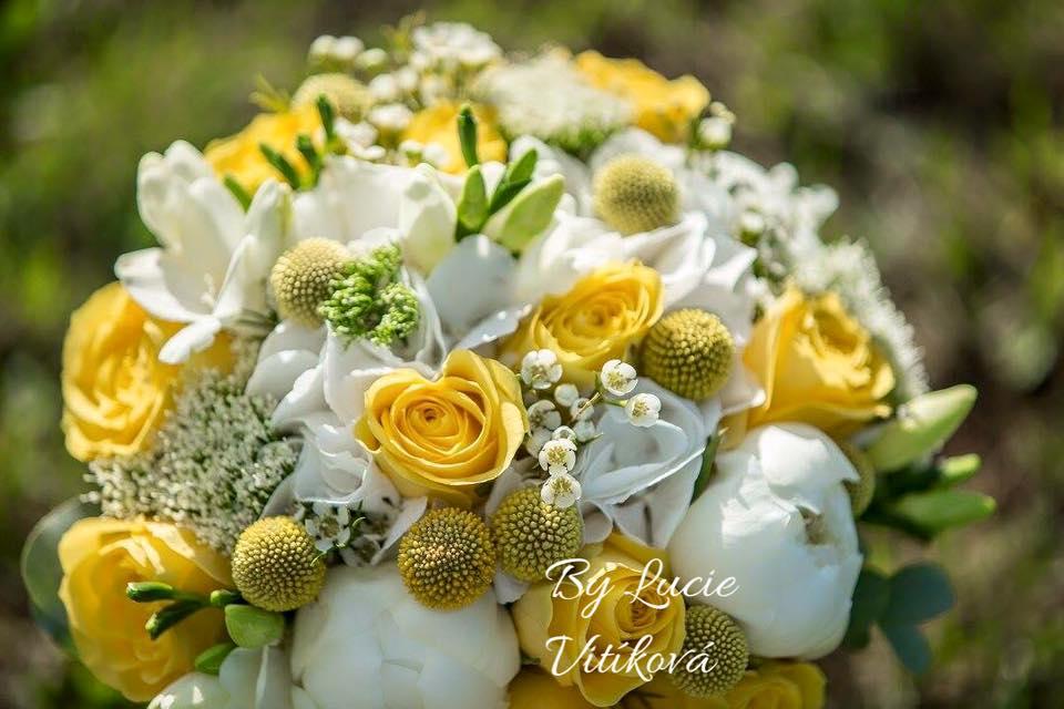 kvetinyvital - Obrázek č. 66
