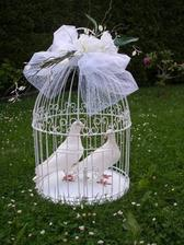 Hrozně by se mi líbily holubice na svatbě - celý život žijí jen s jedním partnerem :) Ale uvidíme zda mi to snoubenec schválí :D