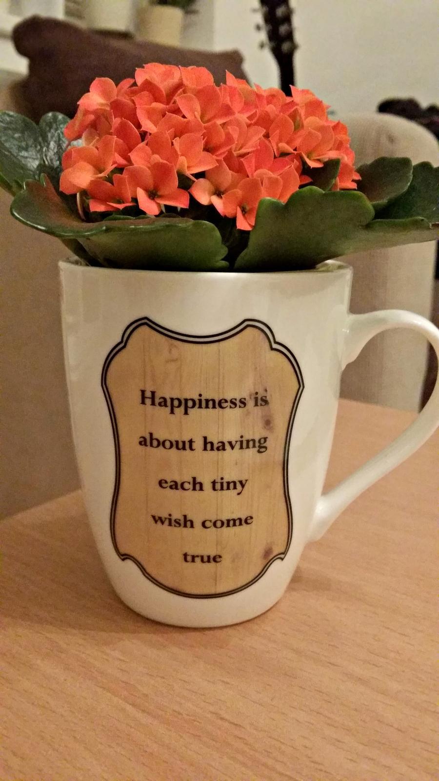 Hrnecky na dekoraciu,ako vazicky, kvetinac atd. - Obrázok č. 1