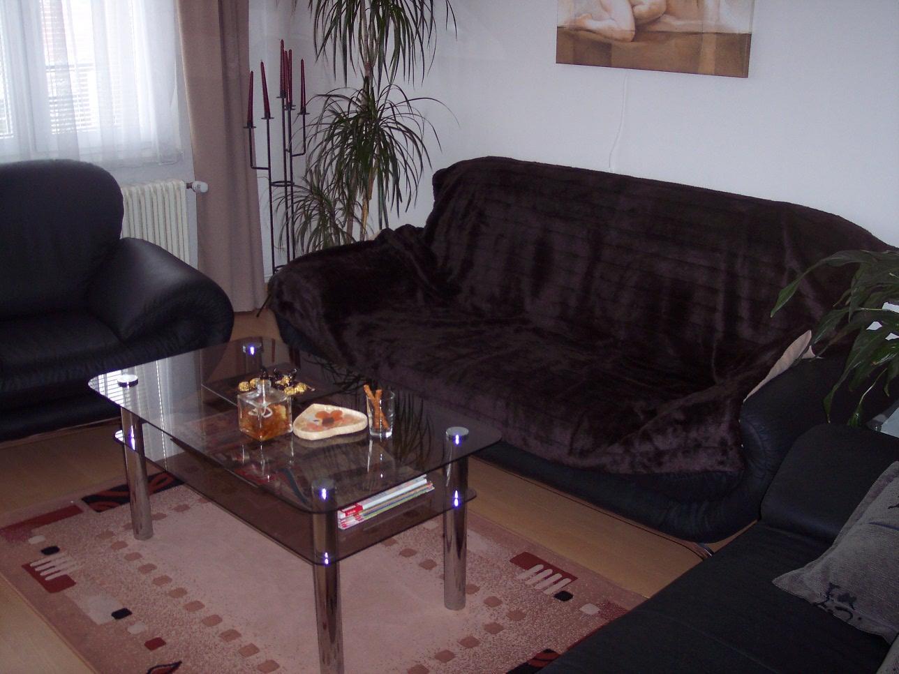 Přestavba panelákového bytu z r. 2005 - Obrázek č. 8