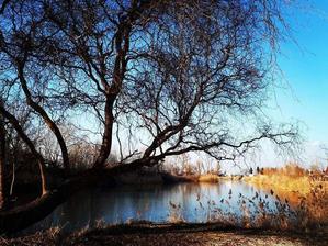 jazero nedaleko chatky