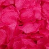 Lupene ruží ,