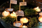 Plávajúce sviečky - oriešky s prianím novomanželom,