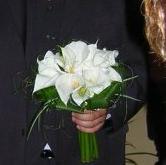 Prípravy na našu svadbu 16.9.2006 :o) - asi naj naj :o)