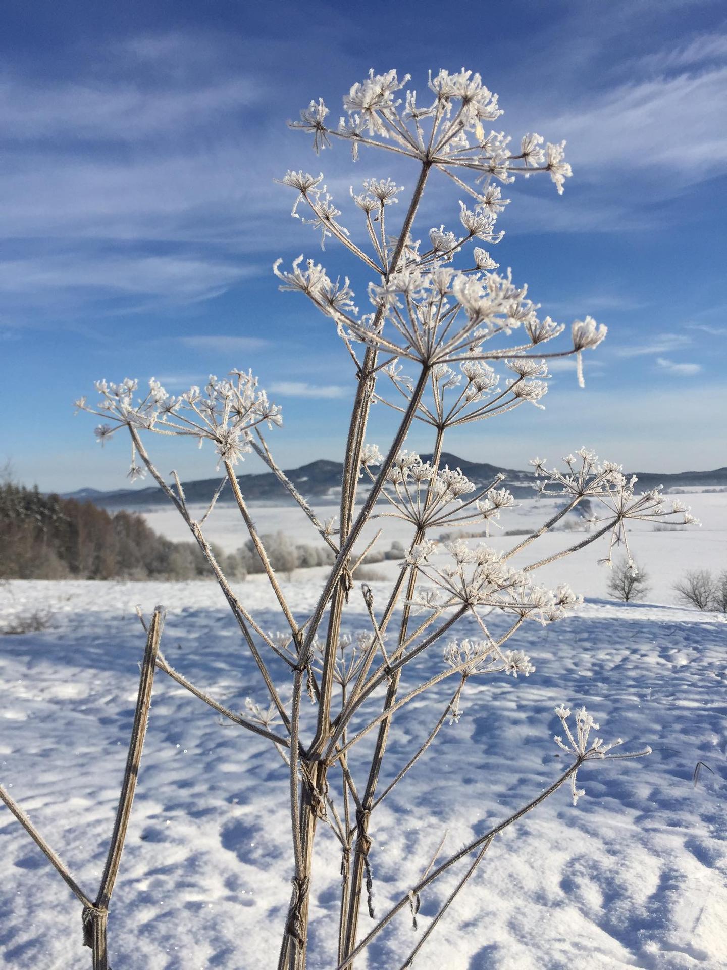 Naše cesta - zima čaruje