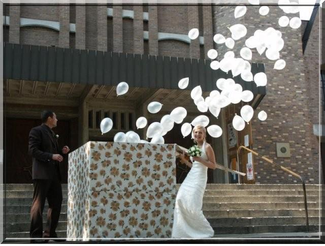 15.5.2010 Sonki&Mirko - Takúto chcem určite, dúfam, že hélium nie je problém zohnať a Zalán je za každú psinu :-D