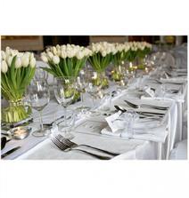 líbí se mi tulipány... ale na výzdobu na stoly to nebudeme, chceme po obřadu zahradní party