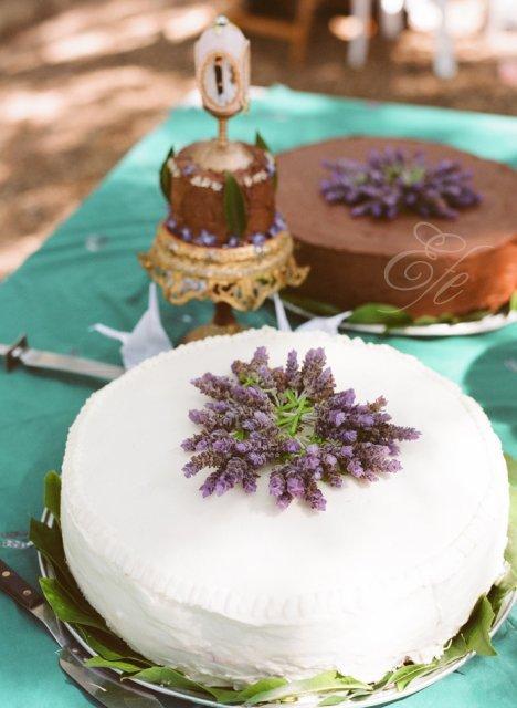 4.6.2011 - pokud dort, tak určitě s levandulí a jednopatrový :-)