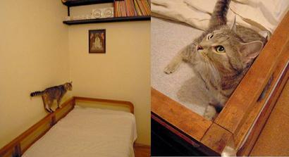 umytý, ošetřený.. s prozatimní postelovou matrací prozatimně u segry v bytě :) i s kořenkama. Dneska na něm budu spát :) Naše kočička si ho zamilovala a pořád se na něm válí a dělá lotroviny