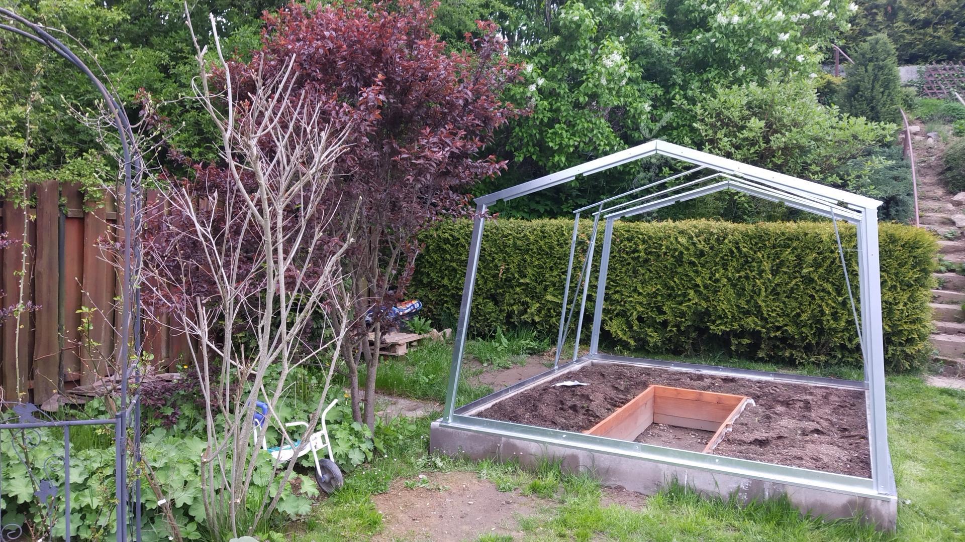 Zahrada 2021 a budování skleníku - Obrázek č. 13