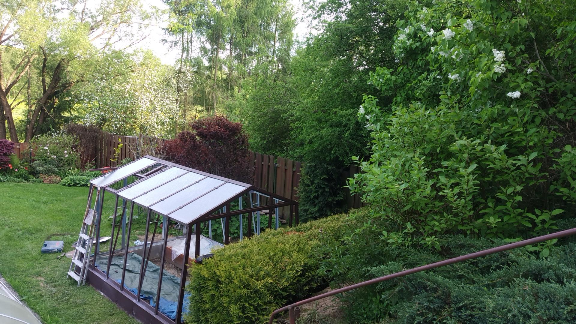 Zahrada 2021 a budování skleníku - Obrázek č. 19
