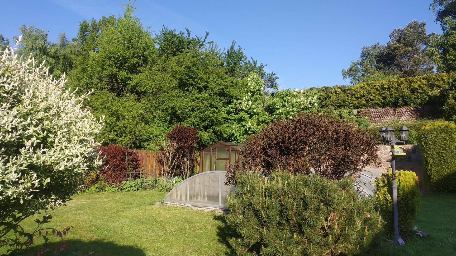 Zahrada 2021 a budování skleníku - Obrázek č. 25