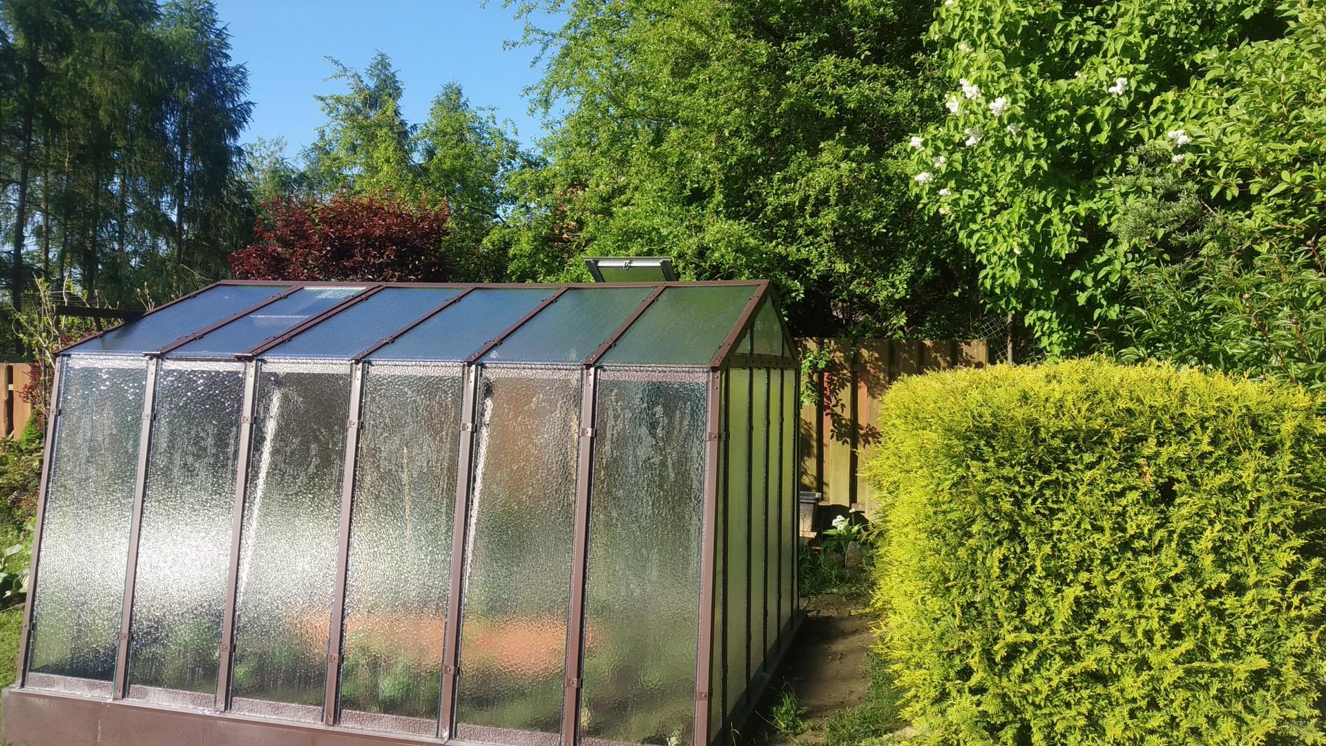 Zahrada 2021 a budování skleníku - Obrázek č. 21