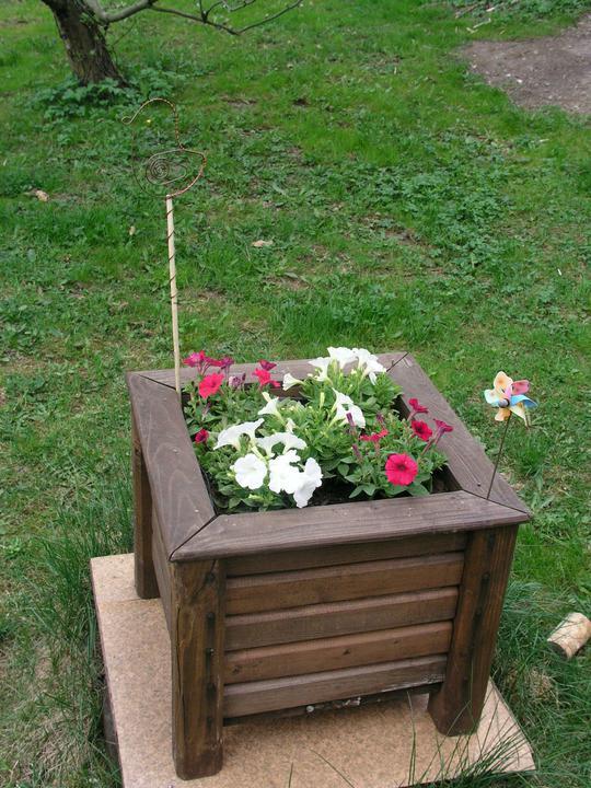 Naše doma :) - Celé léto krásně kvetly :).
