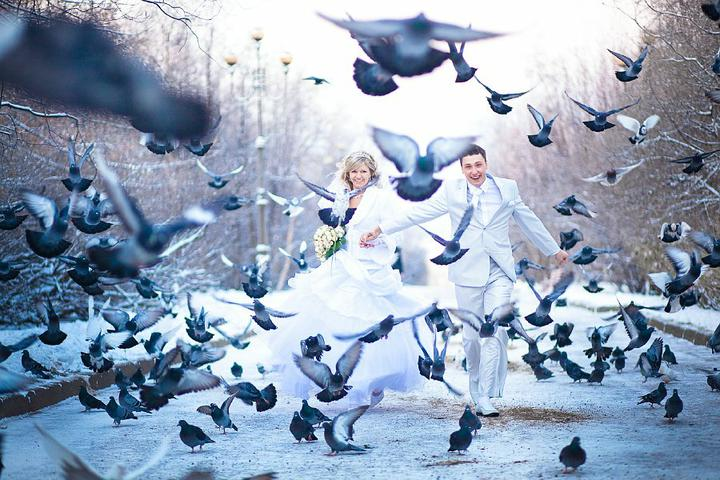 * svadobne pozy * - Obrázok č. 11