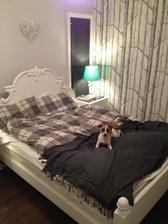V nasej spalni