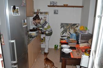 Varime na stedry vecer. Chladnicka nefunguje, vypla sa potom co teplota v kuchyni klesla pod 6 stupnov celzia. :-)