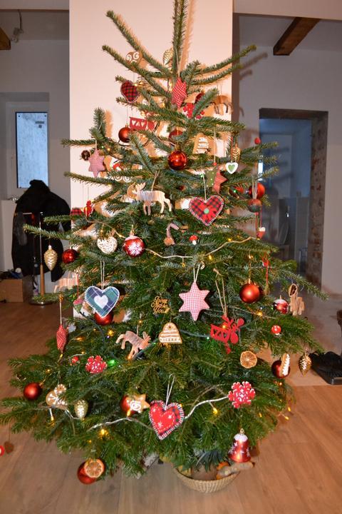 U nás - v malom dome :-) - nas stromculik :-)