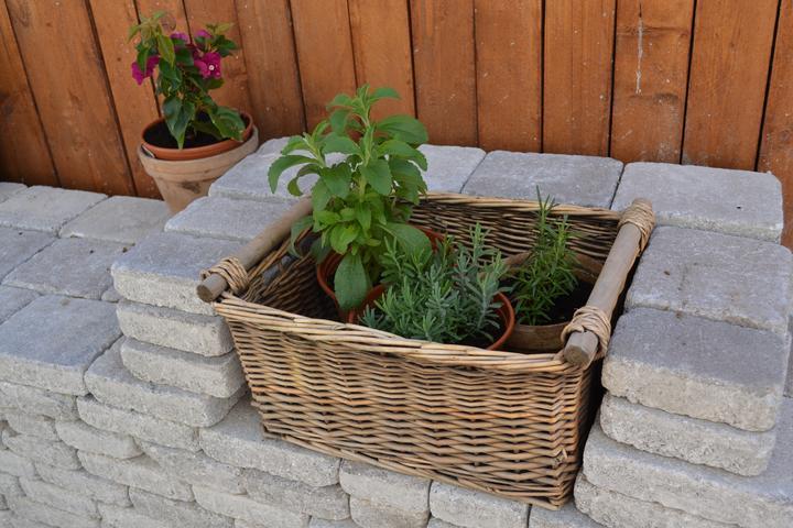 Projekt - záhrada ;-) - Kos co susedia vyhodili ;-)