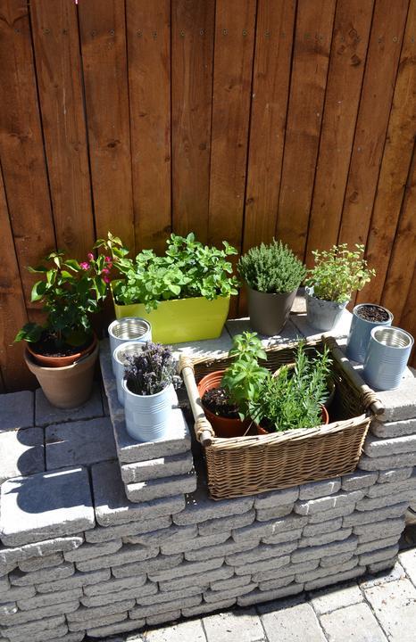 Projekt - záhrada ;-) - bylinkace :-) zatial takto kadejako