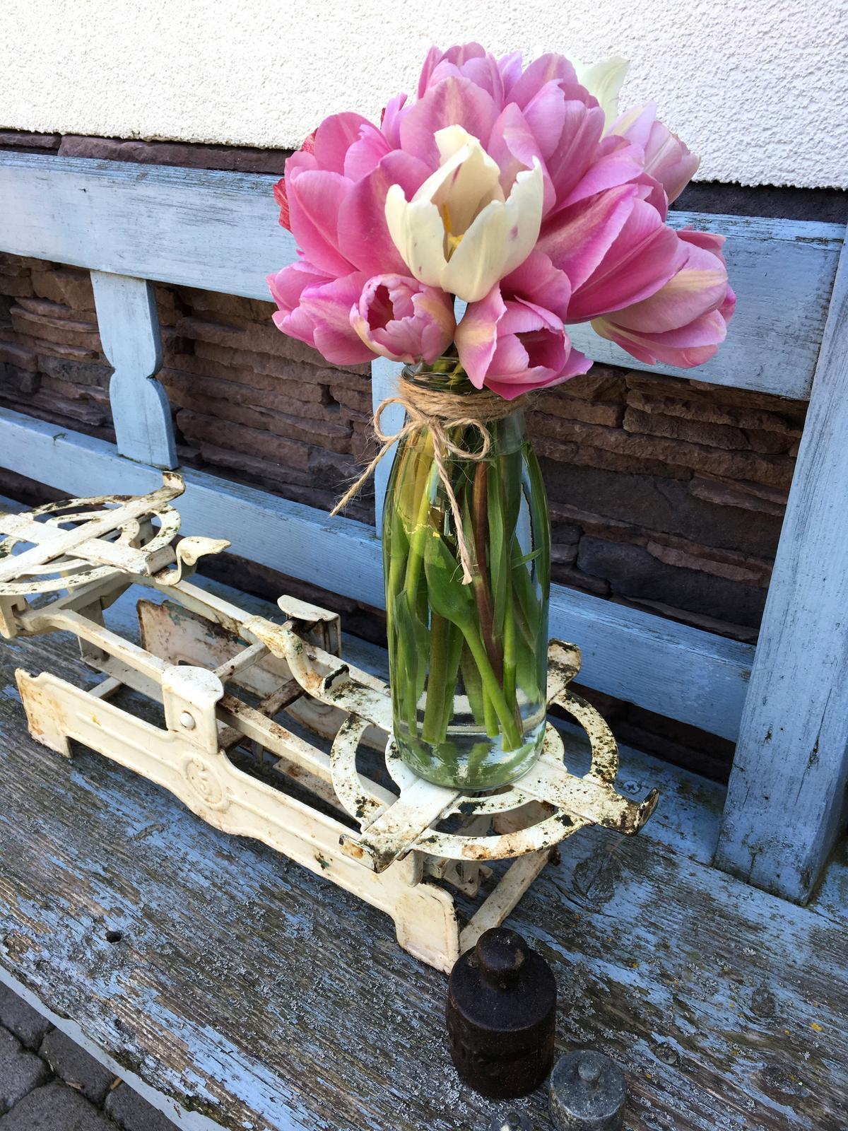 Projekt - záhrada ;-) - Tulipány z predzáhradky