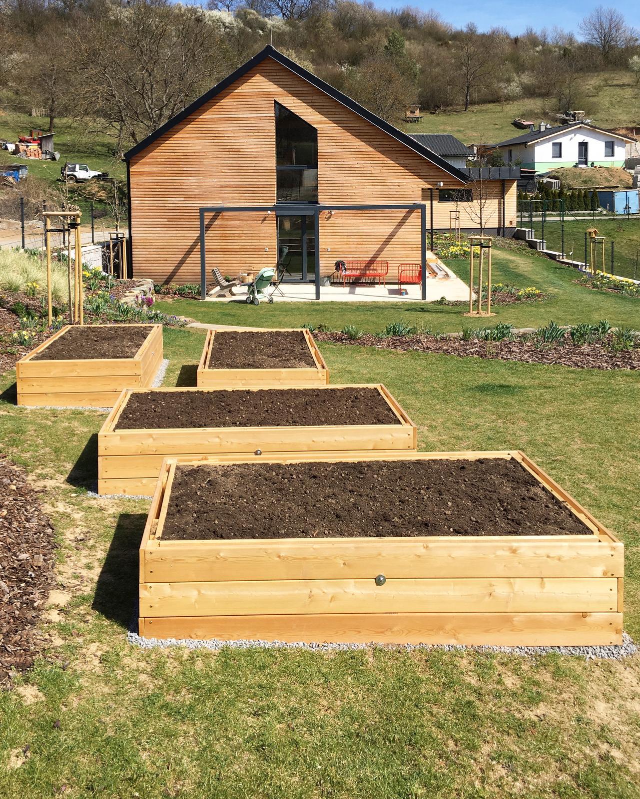Záhrada v starom sade - Včera sme konečne dokončili záhony a zasadili zeleninku
