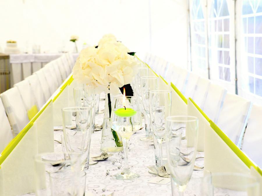 Venkovní areál pro svatby - Obrázek č. 13