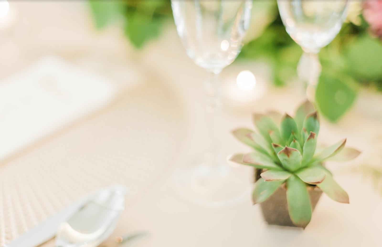 Nežná svadbička Lenky a Stana s množstvom skalných ruží. - Obrázok č. 14