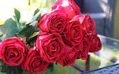 kytice rudých růží,