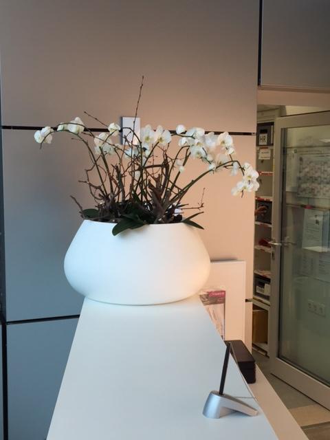 Inspiracie z Nemecka - Kvety v mojej robotke, sice uz znacne odkvitnute, ale velmi sa mi pacia