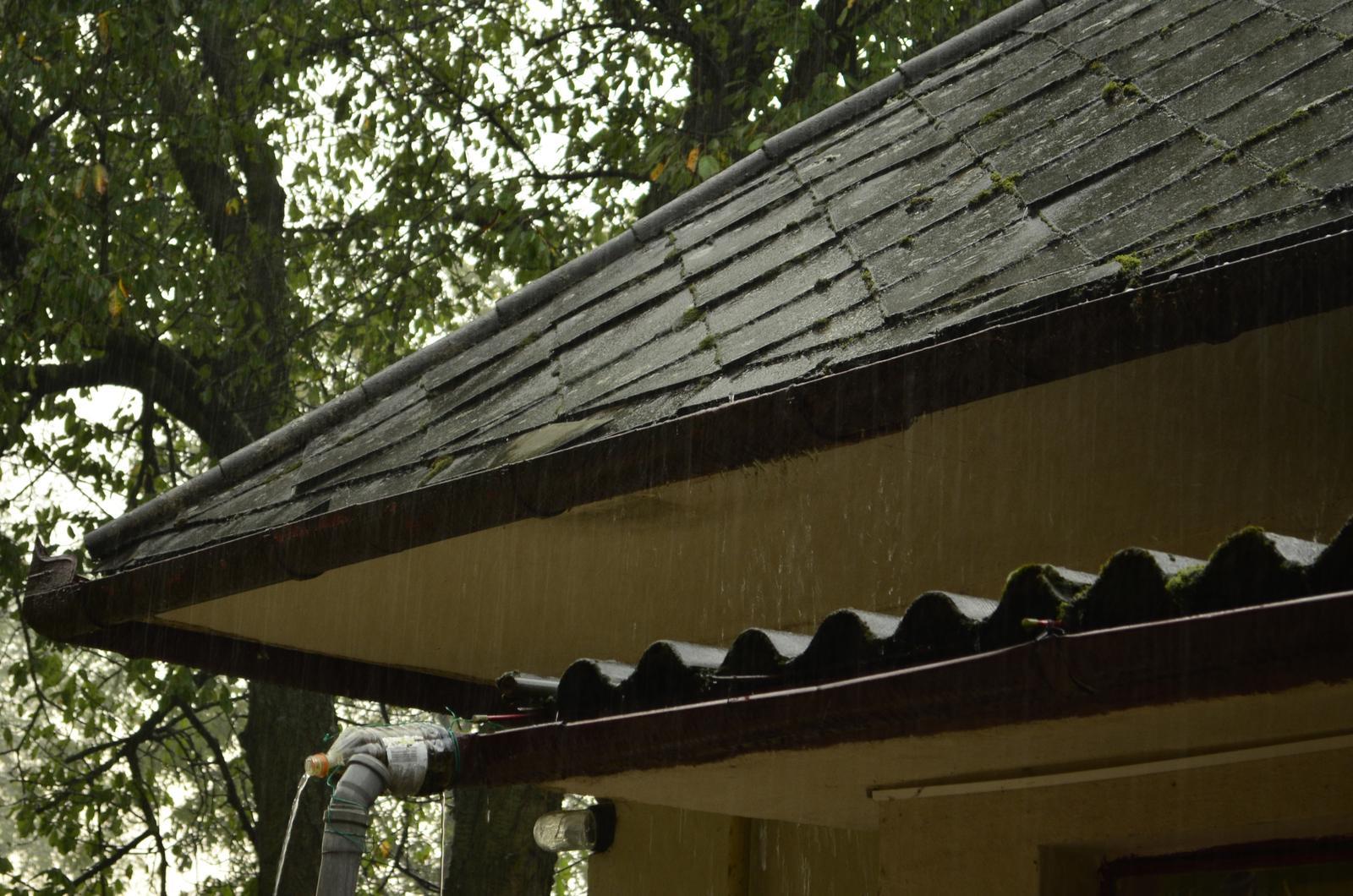 V zelenom dome - deravéé