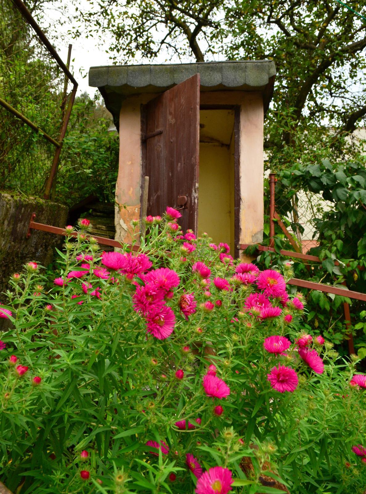 V zelenom dome - latrína na stavbe nesmie chýbať