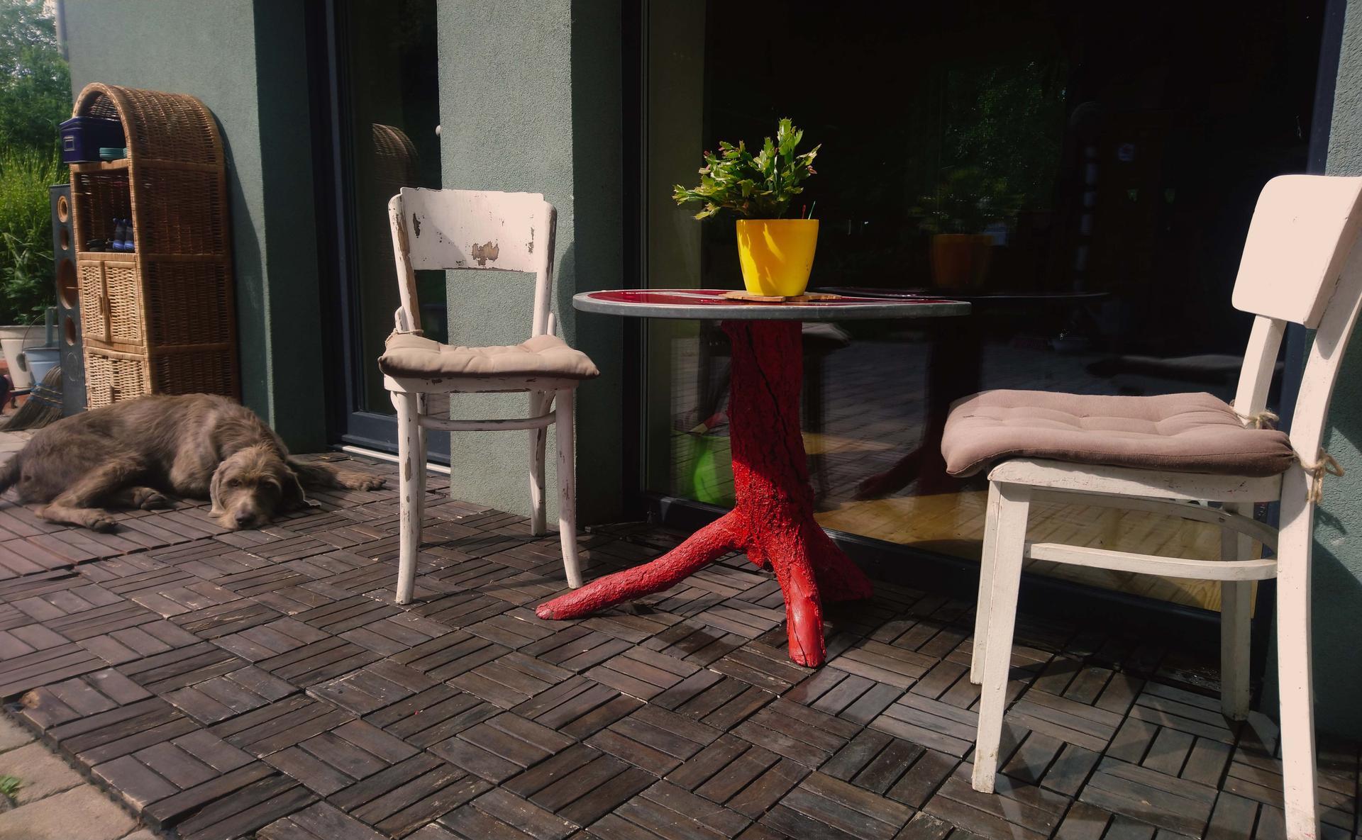 """V zelenom dome - Všetko na tejto fotke našej kávičkovej terasy je viacmenej od """"smeťáku"""". Teda okrem pána čokla :-D. Drevenná podlaha vyzerala hrozne, ale jemné prebrúsenie a náter spravili vela, ešte pár rokov poslúži. A je príjemná naboso"""