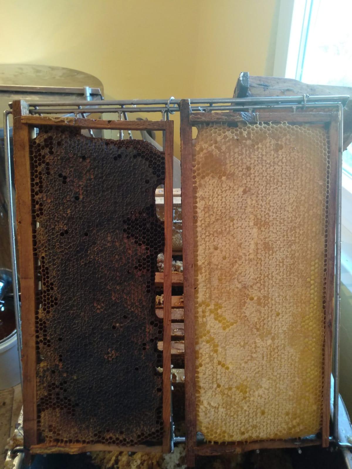 Včelí med - Obrázok č. 3