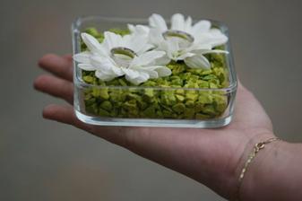 Co už mame:) - zelene kamienky a cyklamenove kvietky:)