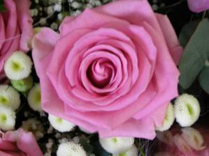 dostali sme fuuru kvetov ale nikto ich nenafotil... zato detajlne ano - svagrik diik! :o)