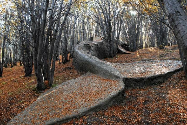 Bez slov a pre zábavu. - Sochár Adrian Villar Rojas vytvoril túto sochu vráskavca obrovského v životnej veľkosti v lese Ushuaia v Argentíne.