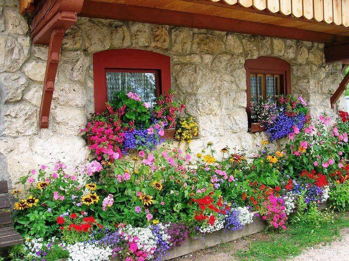 Okrasné záhrady - Obrázok č. 24
