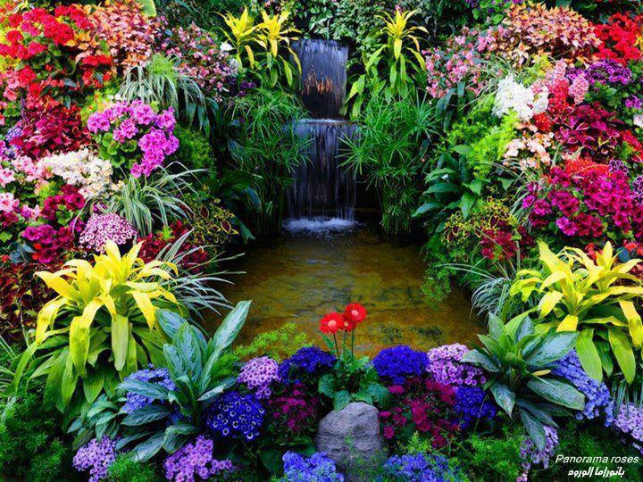 Okrasné záhrady - Obrázok č. 34