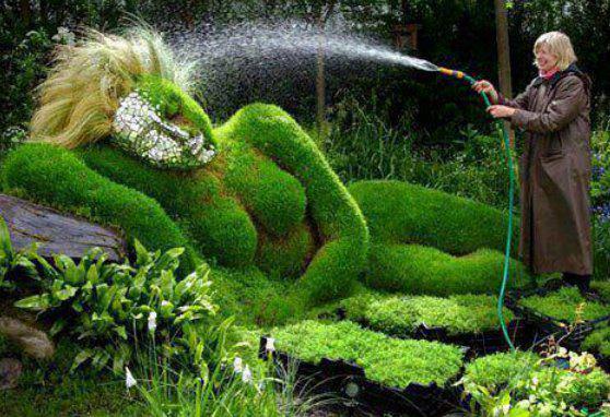 Okrasné záhrady - Obrázok č. 41