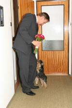 uvítací výbor yorkšírků při čekání na nevěstu ;o)