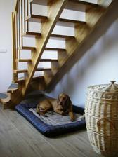 Doupě pod schody