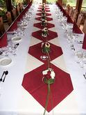 Janča a Jirka - přípravy na červenec 2012 - dekorace stolu