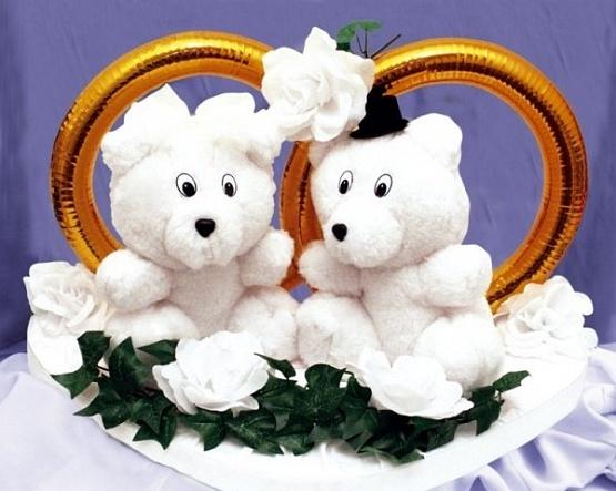Janča a Jirka - přípravy na červenec 2012 - Myšky na auto nevěsty, roztomilé