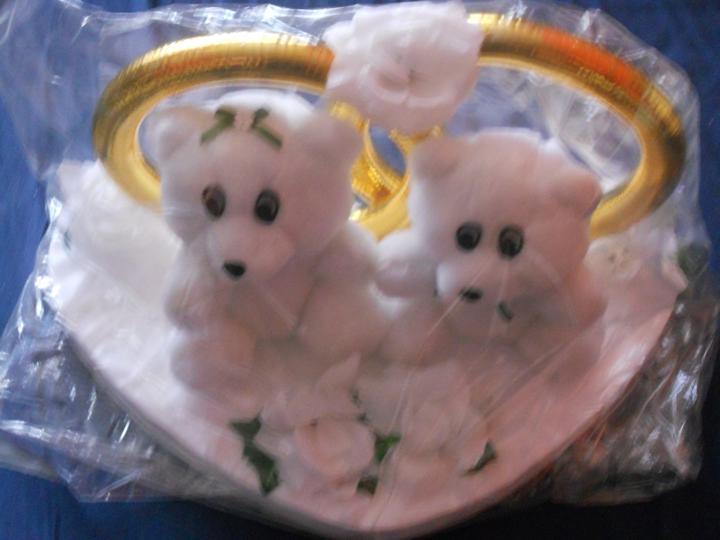 Janča a Jirka - přípravy na červenec 2012 - reálná fotka myšek na auto nevěsty