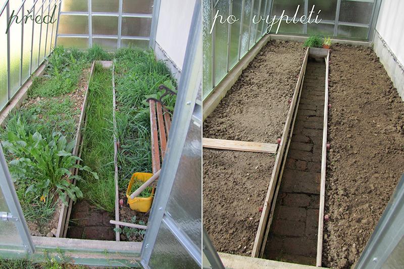 Zahrada - O víkendu jsme zlikvidovali džungli ve skleníku co narostla od podzimu. Teď mi poraďte co do něj zasázet.